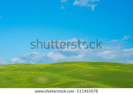 Landscape with field of flowers, Italy