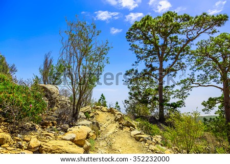 Landscape with footpath in Mountains and Blue Sky on Tenerife Canary Island in Spain