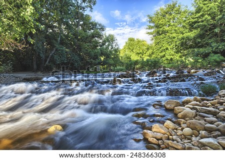 Landscape with forest, river and stones in Cape Town South Africa - stock photo