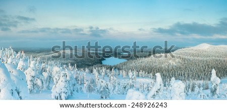 Landscape with frozen lake and trees under snow caps at day time