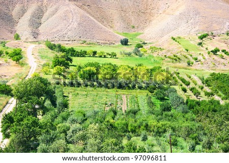 Landscape with gardens, orchards in Armenia.