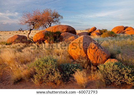 Landscape with granite boulders, trees and blue sky, Namibia, southern Africa - stock photo