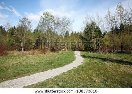 landscape with grass,blue sky and road - stock photo
