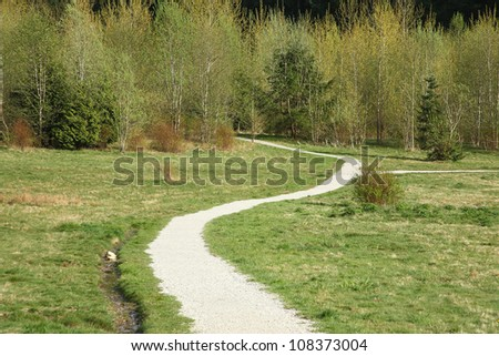 Landscape with grass,trees and road - stock photo