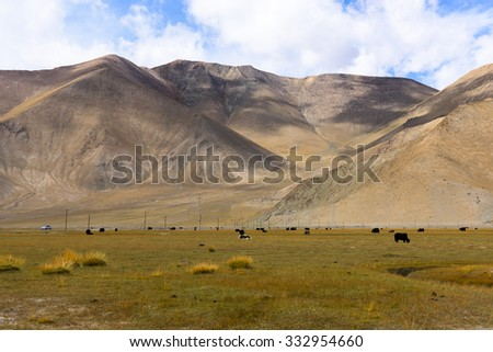 Landscape with Grassland around Muztagh Ata and Karakuli Lake, Pamir Mountains, Kasgar, Xinjiang, China