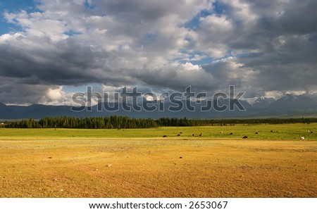 Landscape with grassland mountain range and clouds