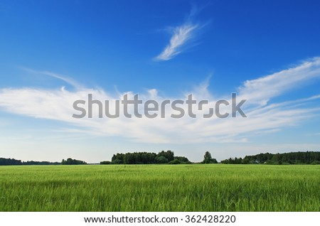 Landscape with green field and beautiful clouds on blue sky in summer day - stock photo