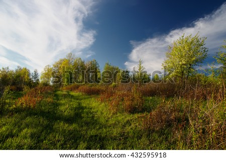 Landscape with green spring trees and yellow grass in the foothills of Altai mountains under vivid clear blue sky with white clouds, Siberia, Russia - stock photo