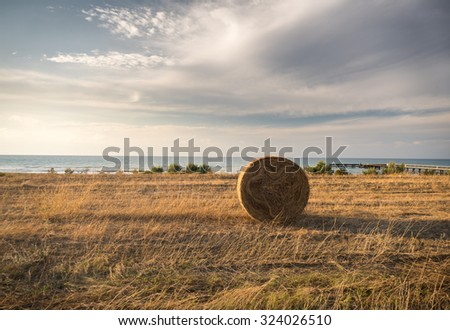 landscape with hay bales and golden fields - stock photo