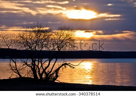 Landscape with lake, tree and sunset sky.