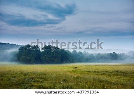 Landscape with mist covering oak trees forest and cloudy sky - stock photo