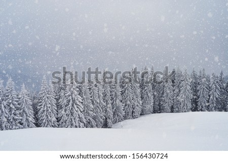 Landscape with mountain and forest in winter snowstorm. - stock photo
