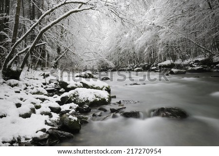Landscape with mountain stream in snow covered forest.