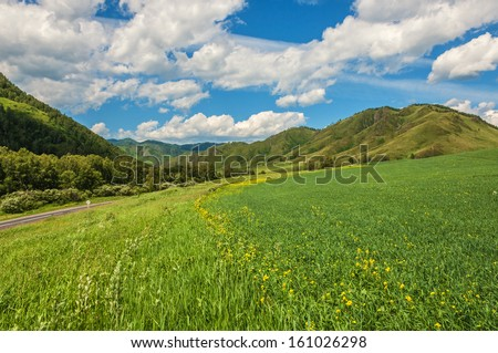Landscape with mountains, flowers and green grass in the meadows, blue sky and clouds. - stock photo