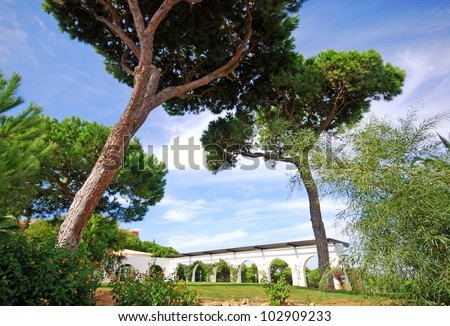 landscape with pines and white arcs in the beautiful garden(Albufeira,Portugal)