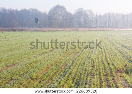 landscape with raised hide - stock photo