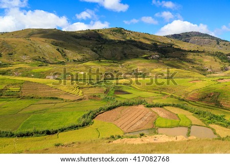Landscape with rice fields in central Madagascar on a sunny day - stock photo