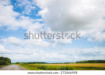 Landscape with road and cornfield - stock photo