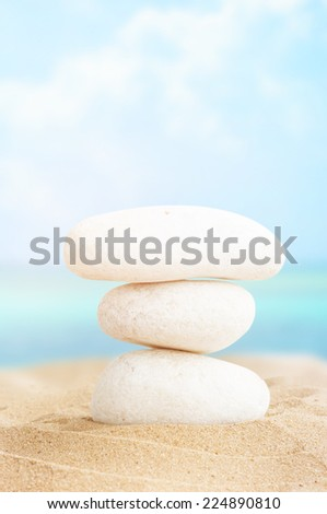 Landscape with stones and shells on tropical beach - stock photo