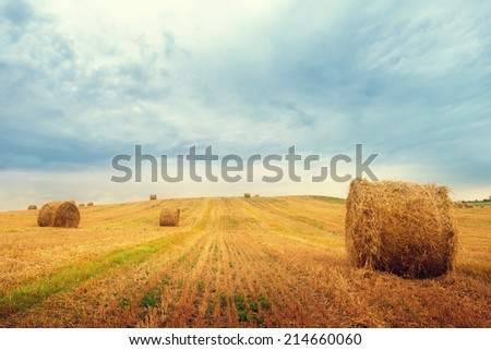 Landscape with straw bales on agricultural field - stock photo