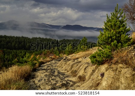 Landscape with sunlit mountain road and pine forest and rainy clouds on a background