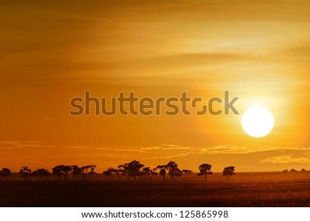 landscape with sunrise on the savanna in Kenya - stock photo