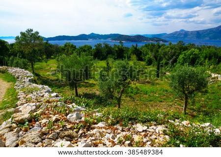 Landscape with the coast, sea and boats, in the Lopud Island, one of the Elaphiti Islands, Croatia - stock photo