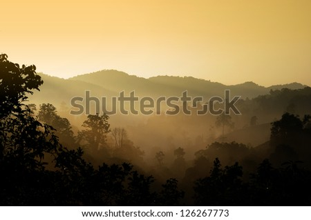 Landscape with the mist in the mountain, Chiang Rai, Thailand