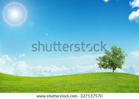 Landscape with tree and blue sky, countryside - stock photo