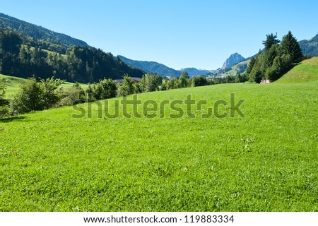 Landscape with tree and mountains - stock photo