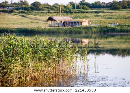 Landscape with waterline, reeds, vegetation and ruined construction - stock photo