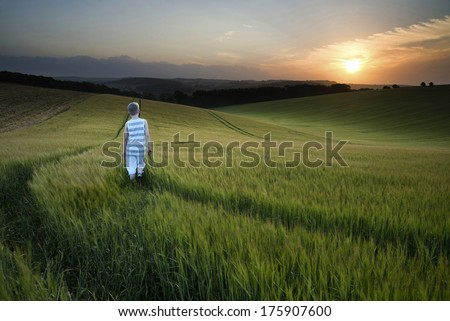 Landscape young boy walking through crop field at sunset - stock photo