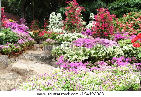 Landscaped flower garden with lots of colorful blooms
