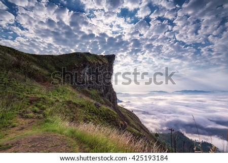 Landscapes on the peak of mountain and Mist at Phu chi fa in Chiangrai,Thailand