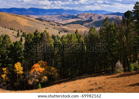Landscapes photo of forest and mountains in southwest Montana, Idaho boarder. - stock photo