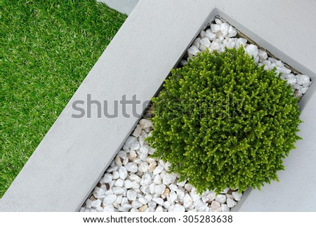 Landscaping combinations of plant and grass - stock photo