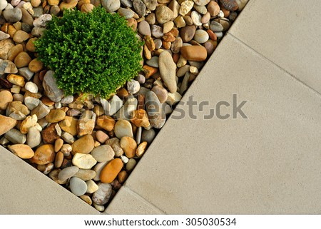 Landscaping combinations of plant, pebbles and paving - stock photo