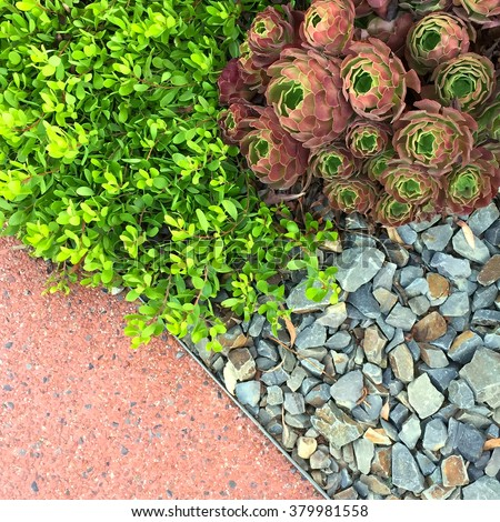 Landscaping stock images royalty free images vectors for Soft landscape materials