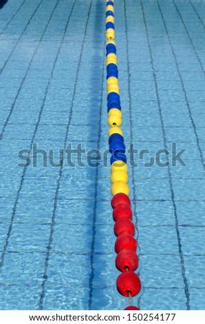 lane olympic size pool