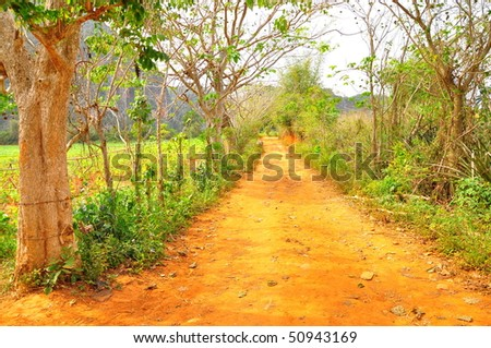Laneway in the Cuban tobacco countryside - stock photo