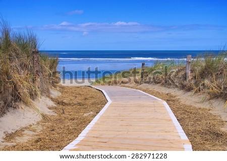 Langeoog dune and track  - stock photo