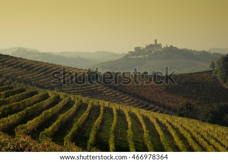 Langhe vineyards of Piedmont in autumn