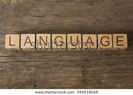 LANGUAGE text on a wooden background - stock photo