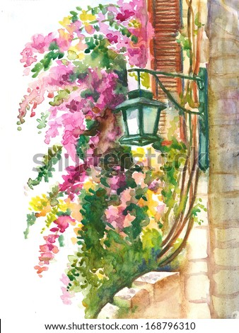 Lantern and  Blooming  Pink Bougainvillea  Framing the Window . Watercolor illustration. - stock photo