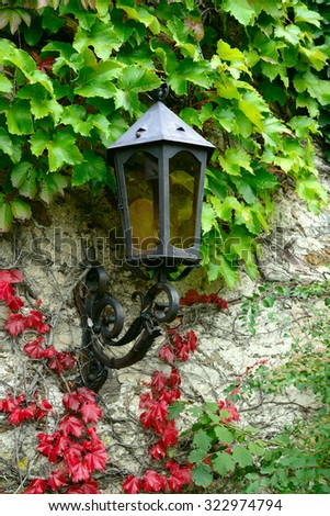 lantern on the old wall covered with autumn leaves - stock photo