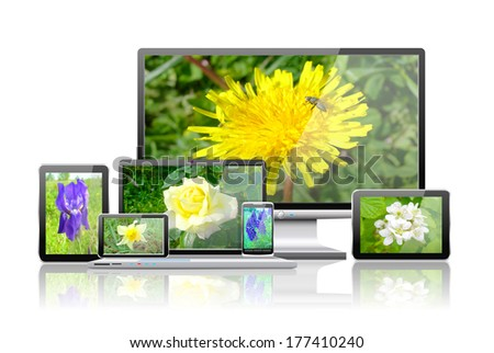 Laptop, tablet pc, mobile phone, TV and navigator with flower  wallpaper are shown in the image. - stock photo