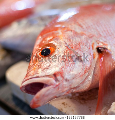 Lapu-lapu, red snapper and tuna, seafood on asian market
