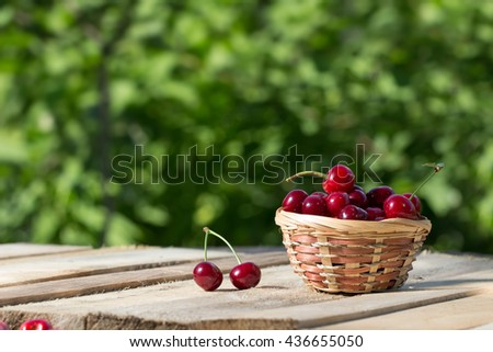 large and juicy ripe cherries in a basket on wooden board on a background of foliage at sunny day, fresh fruits - stock photo