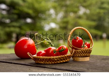 Large and small cherry tomatoes sitting on picnic table