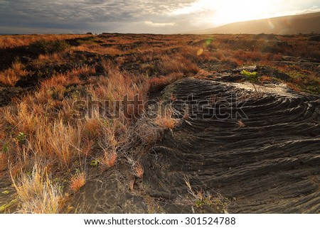 Large areas of land covered by lava flows from the Kilauea volcano on the big island of Hawai'i - stock photo